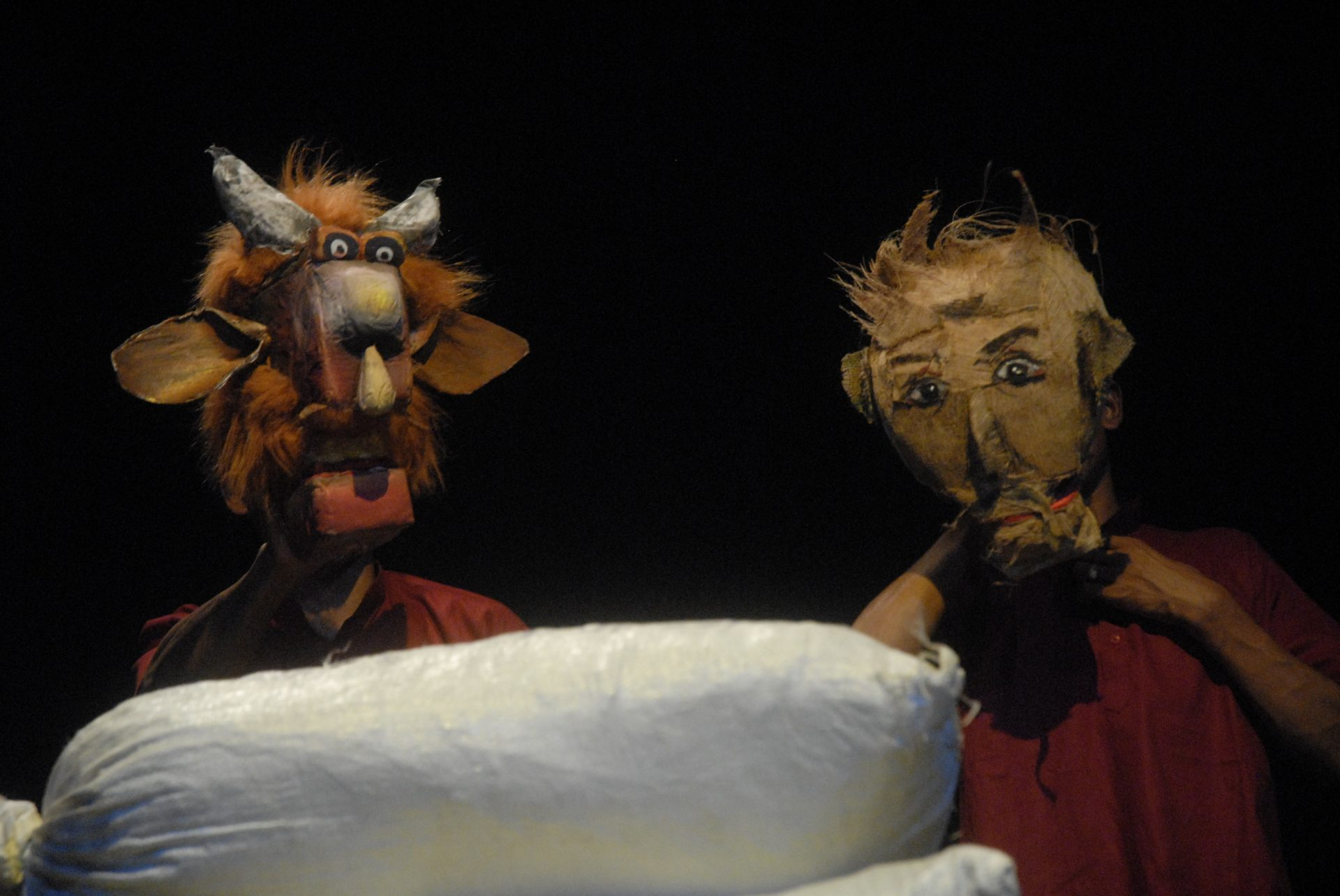 2008_india_power_puppetry_15